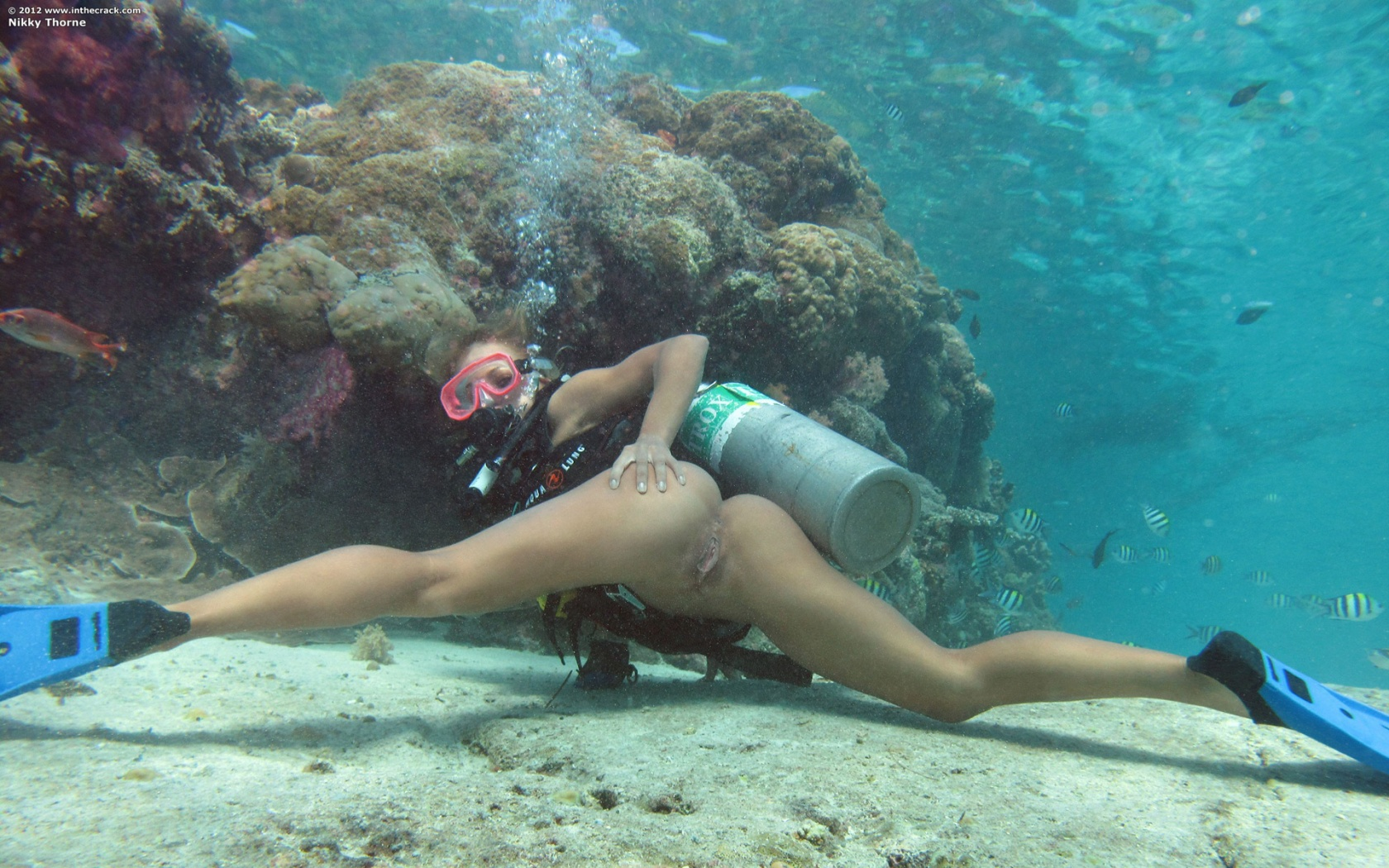 Nikky thorne nude underwater scuba diving amusing