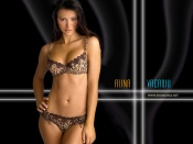 Alina Vacariu sexy lingerie shooting wallpapers