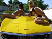 bikini babes, babes and cars, corvette, chevy, models, hot babes, sport cars
