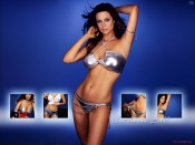 Catherine Bell sexy silver bikini wallpapers