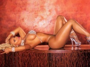 Coco t sexy wallpaper, nicole austin wallpaper, sexy wallpaper, coco t photos. ice t wife, busty babe, huge tits, big ass, video vixen