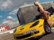 Corvette and blonde hottie