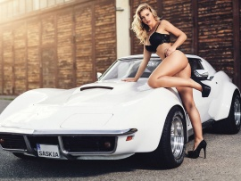 Corvette and hot ass blonde (click to view)
