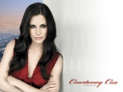 Courteney Cox, sexy portrait, wallpapers, actress, celebrity, beauty, woman