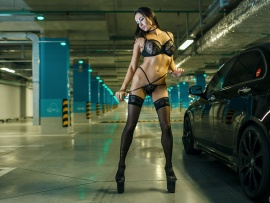 Honda Accord and lingerie model (click to view)