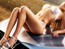 Hot Babe and Car (click to view)