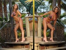 Jessica Canizales Wallpaper Hot Bikini Wallpapers bfg76y