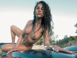 Naked car wash (click to view)