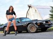 American southern hottie and pontiac trans am