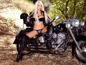 Rikki Six, pornstar, lingerie photo, babes and bikes, custom motorcycle, harley davidson, hot babe, blonde, fake tits