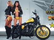 Rockstar Energy biker babes and Harley Davidson motorcycle